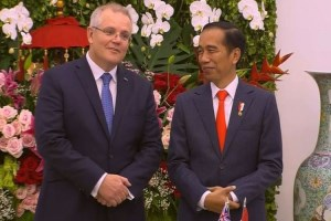 Trade deal with Indonesia gives Aussie farmers a huge boost article image