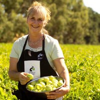 Simply Green Tomatoes: Ripe with export success article image
