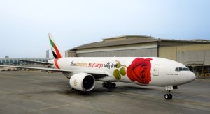 'Love Plane' delivers 1.6 million roses for Valentine's Day in Australia article image