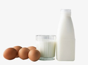 Have your say on new export controls for milk, eggs and fish article image