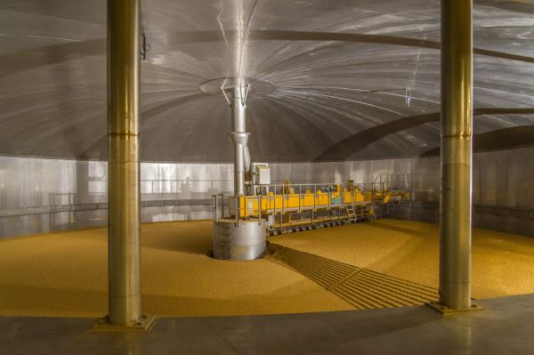 Barley grain being steeped at Coopers Malting plant