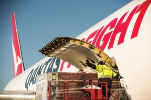 Qantas freight now offers exporters greater capacity  article image