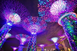 Australia and Singapore sign digital trade agreement article image