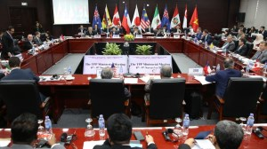 Modelling the TPP: not should we, but can we? article image